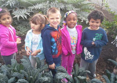 Onsite Preschool option 2